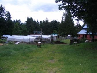 Summer 2006 194